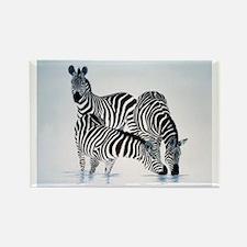 Animal Rectangle Magnet