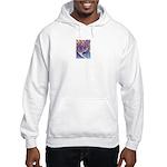 Valley Cat 1 Hooded Sweatshirt
