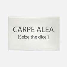 Seize the Dice Rectangle Magnet