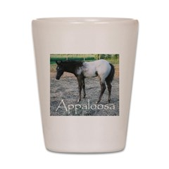 Appy foal Shot Glass