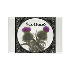 Cute Thistle Rectangle Magnet