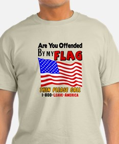 Are You Offended By My Flag