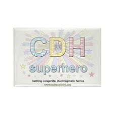 CDH Superhero Rectangle Magnet (100 pack)