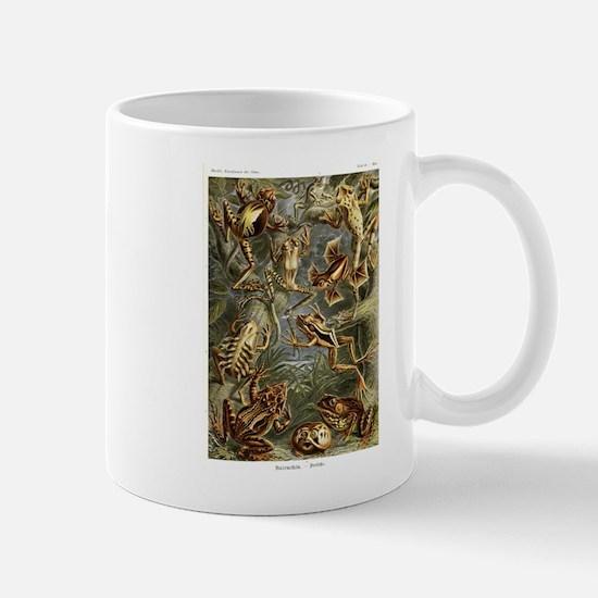 Frogs Mugs