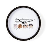 Guinea pig Basic Clocks