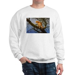 Animal (Front) Sweatshirt