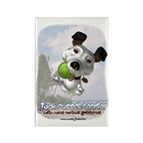 Jack russell terrier Magnets