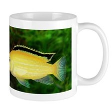 John huxtable Mug