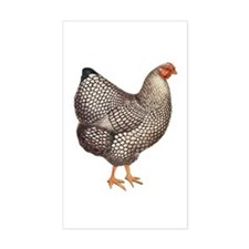 Chicken Hen Rectangle Decal