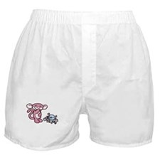 Minky 2.0'sSection Boxer Shorts