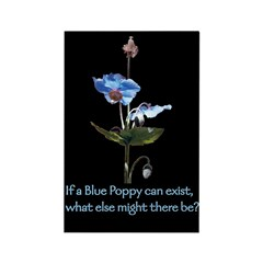 Blue Poppy Rectangle Magnet