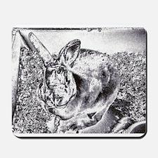 Bunny Art  Mousepad