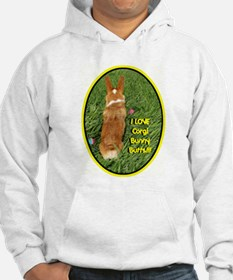 Corgi Bunny Butts Jumper Hoody