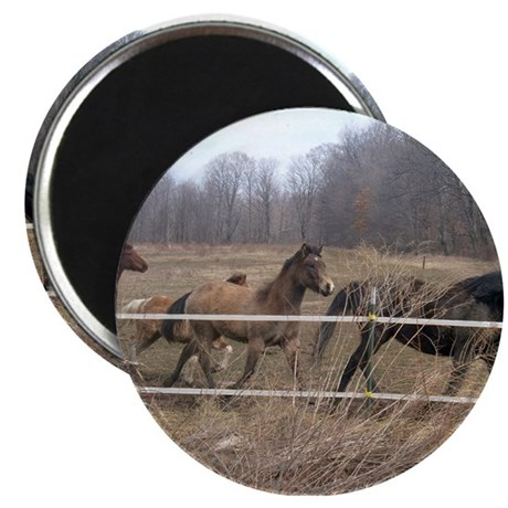 "Hagan's Horses 2.25"" Magnet (10 pack)"