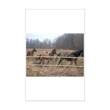 Hagan's Horses Mini Poster Print