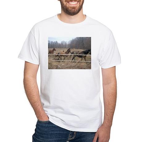 Hagan's Horses White T-Shirt