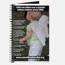 Faith Miles poster #1 Journal