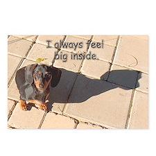 Big Inside Dachshund Dog Postcards (Package of 8)
