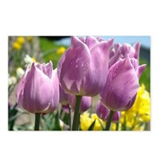 Tulip Flowers Spring Floral Postcards (Package of