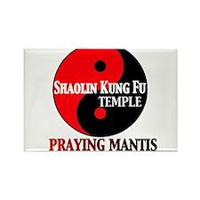 Praying Mantis Rectangle Magnet