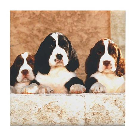 English Springer Pups 2 Tile Coaster