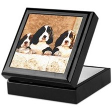 English Springer Pups 2 Keepsake Box