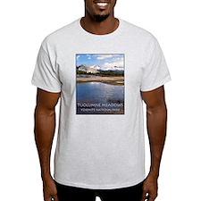 Tuolumne Meadows t-shirt--ash grey
