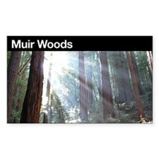 Muir Woods NM Rectangle Decal