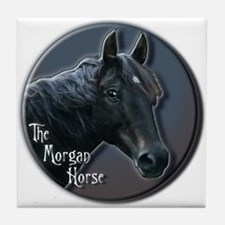 The Morgan Horse - Tile Coaster