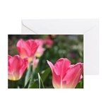 Pink Tulips Greeting Cards (Pk of 10)