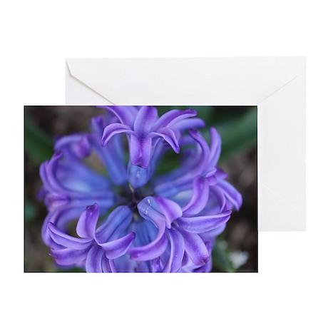 Hyacinth Top Greeting Card