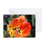 Yellow-Red Tulip Tilted Greeting Cards (Pk of 20)
