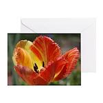 Yellow-Red Tulip Greeting Card