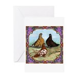 English Shortfaced Pigeons Fr Greeting Card