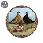 "English Shortfaced Pigeons Fr 3.5"" Button (10"