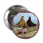 "English Shortfaced Pigeons Fr 2.25"" Button"