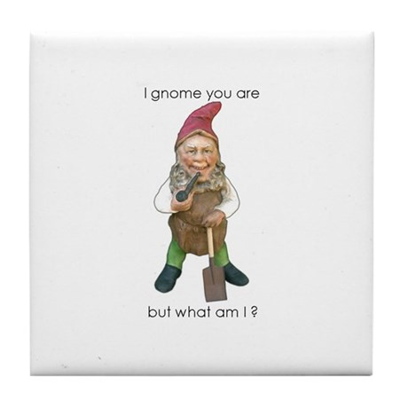 I Gnome You Are But What Am I ? Tile Coaster