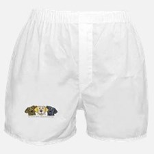 Labs 3 Colors Boxer Shorts