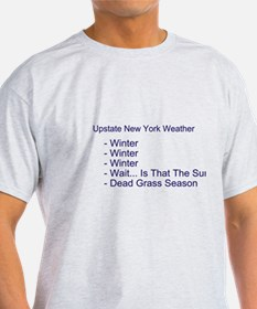 Upstate NY Weather T-Shirt