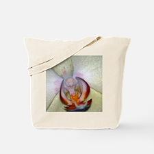 Tote Bag - White Phaleanopsis Orchid