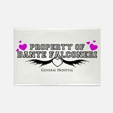 Property of DANTE Rectangle Magnet