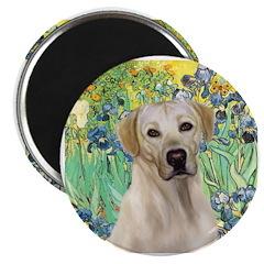 Irises - Yellow Labrador Magnet