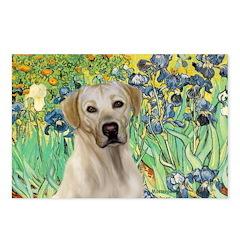 Irises - Yellow Labrador Postcards (Package of 8)