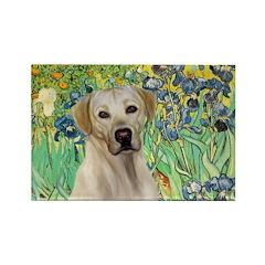 Irises - Yellow Labrador Rectangle Magnet (100 pac