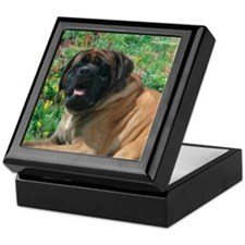 Mastiff 16 Keepsake Box