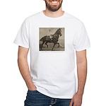 Boy on Taxidermy Horse White T-Shirt