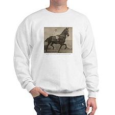 Boy on Taxidermy Horse Sweatshirt
