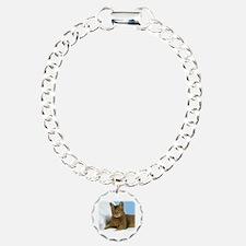 Abyssinian Cat 9Y009D-020 Bracelet