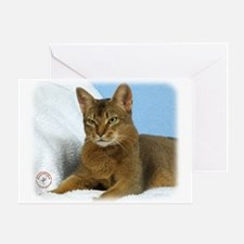 Abyssinian Cat 9Y009D-020 Greeting Card