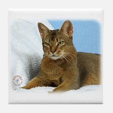 Abyssinian Cat 9Y009D-020 Tile Coaster